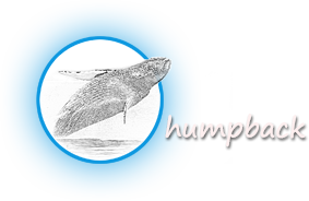 humpback Photography Logo