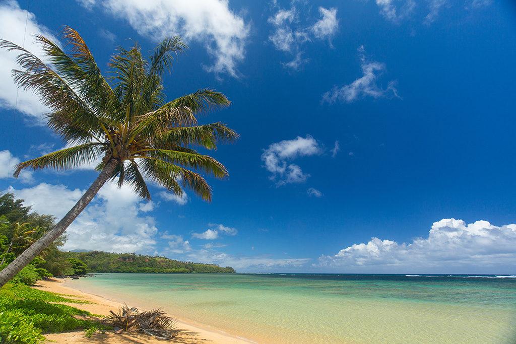 Hawaii vom 14.03.2020 bis 30.03.2020